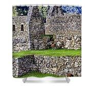 Machu Picchu - Grazing Lamas Shower Curtain
