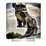 Mack Truck Hood Ornament  Shower Curtain