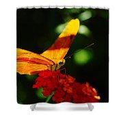 Macro Of An Orange Butterfly Shower Curtain