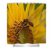 Macro Of Bee On Sunflower...   # Shower Curtain