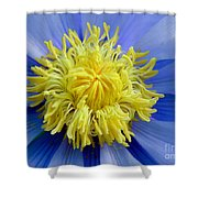 Macro Photograph Of  Blue Waterlily Shower Curtain