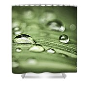 Macro Raindrops On Green Leaf Shower Curtain