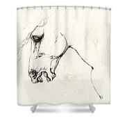 Mad Horse Shower Curtain