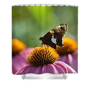 Madame Brown Shower Curtain