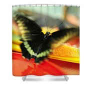 Madame Butterfly. Impressionism Shower Curtain
