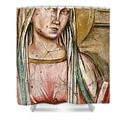 Madonna Del Parto - Study No. 1 Shower Curtain