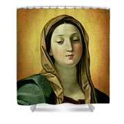 Madonna Shower Curtain