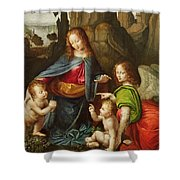Madonna Of The Rocks Shower Curtain