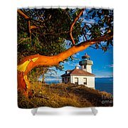 Madrone And Lighthouse Shower Curtain