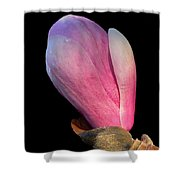 Maggie Shower Curtain
