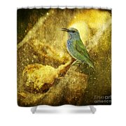 Magic At The Feeder... Shower Curtain