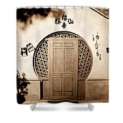 Magic Door Shower Curtain