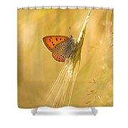 Magic Garden II Shower Curtain