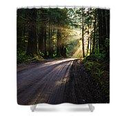Magic Of Redwood Shower Curtain