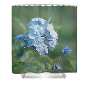 Magical Blues Shower Curtain