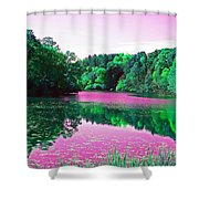 Magical Dream Shower Curtain