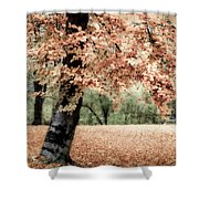 Magical Fall Shower Curtain