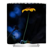 Magical Forest Arnica  Shower Curtain