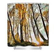 Magical Forest - Drawing Shower Curtain