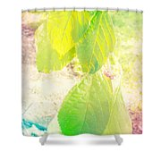 Magical Leaves Shower Curtain