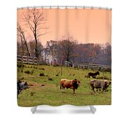 Magical Mornings Shower Curtain