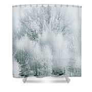 Magical Snow Palace Shower Curtain