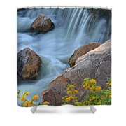Magical Waters Shower Curtain