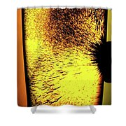Magnetism Floats Shower Curtain