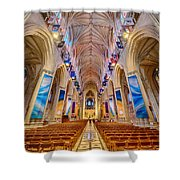 Magnificent Cathedral II Shower Curtain