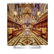 Magnificent Cathedral Iv Shower Curtain