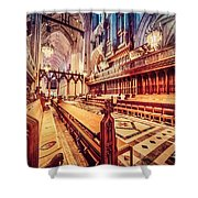 Magnificent Cathedral Shower Curtain