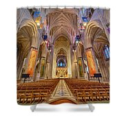 Magnificent Cathedral V Shower Curtain