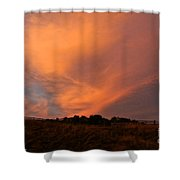 Magnificent Evening Shower Curtain
