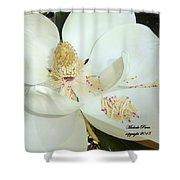 Magnolia Love Shower Curtain