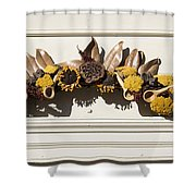 Magnolia And Yarrow Swag Shower Curtain