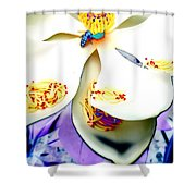 Magnolia Bee Shower Curtain