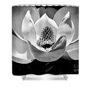 Magnolia Bloom 2bw Shower Curtain