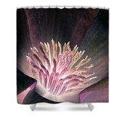 Magnolia Flower - Photopower 1821 Shower Curtain