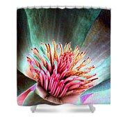 Magnolia Flower - Photopower 1841 Shower Curtain