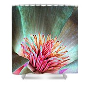 Magnolia Flower - Photopower 1843 Shower Curtain