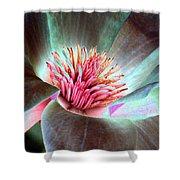 Magnolia Flower - Photopower 1844 Shower Curtain