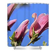 Magnolia Flowers Shower Curtain