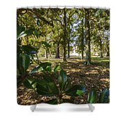 Magnolia Leaves Shower Curtain