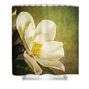 Magnolia Morning Shower Curtain