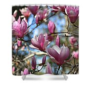 Magnolia Perspective Shower Curtain