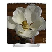 Magnolia Still 1 Shower Curtain