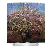 Magnolia Tree In Bloom Shower Curtain