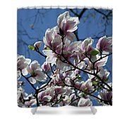 Magnolia Twig Shower Curtain