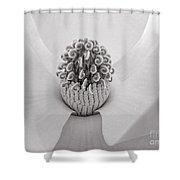Magnolia Veil Shower Curtain