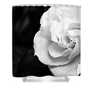 Magnolia With Leaves Shower Curtain
